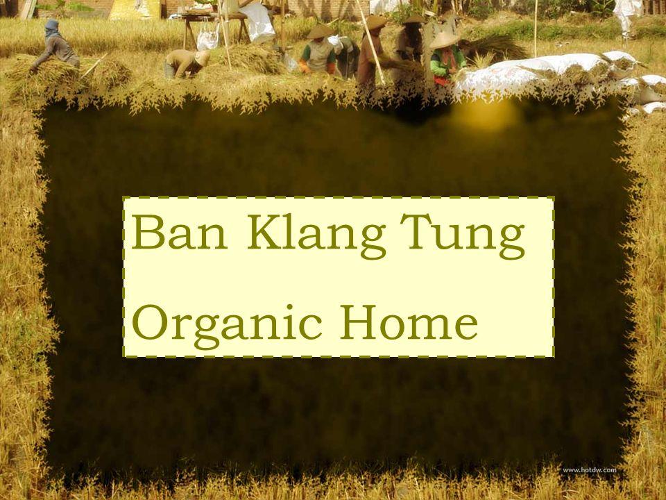 Ban Klang Tung Organic Home