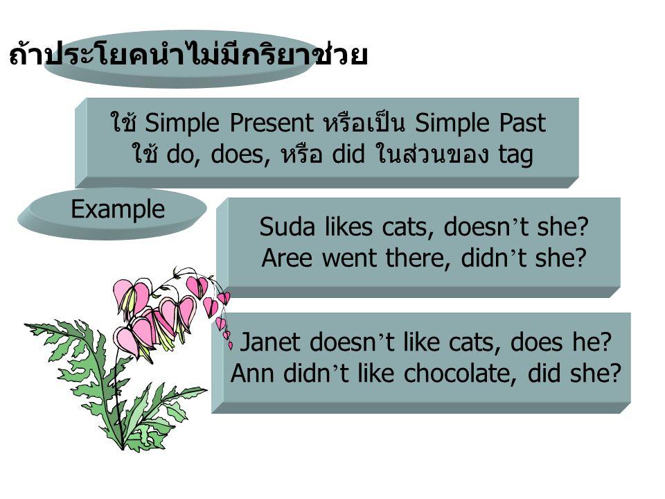 ใช้ Simple Present หรือเป็น Simple Past ใช้ do, does, หรือ did ในส่วนของ tag ถ้าประโยคนำไม่มีกริยาช่วย Example Suda likes cats, doesn ' t she? Aree we