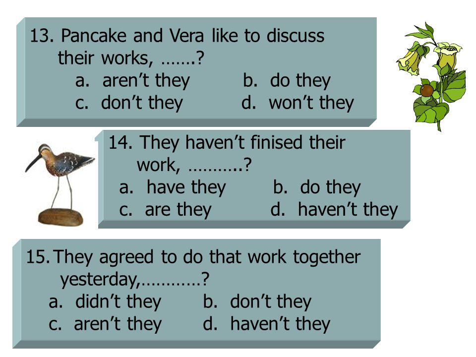 13. Pancake and Vera like to discuss their works, …….? a. aren't they b. do they c. don't they d. won't they 14. They haven't finised their work, ……….