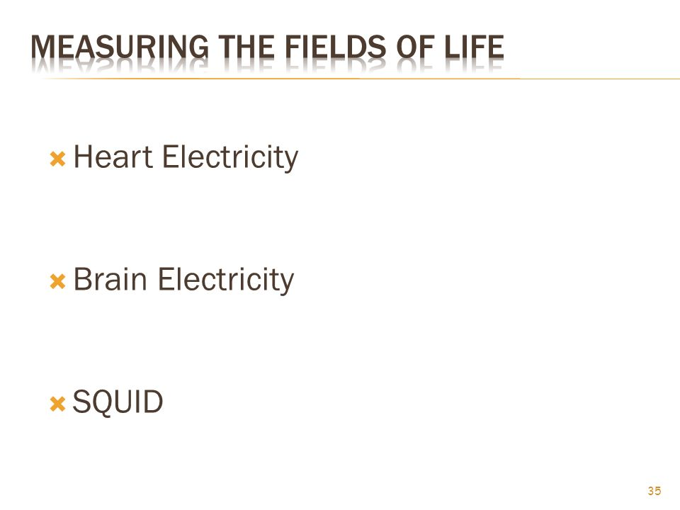  Heart Electricity  Brain Electricity  SQUID 35