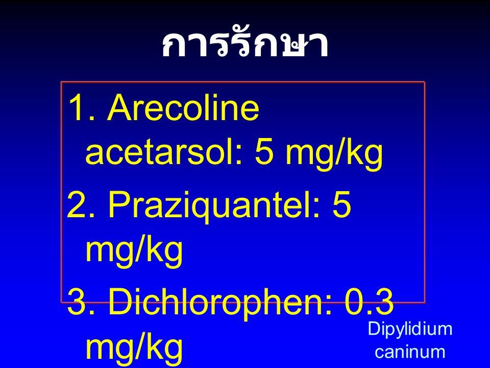 การรักษา 1. Arecoline acetarsol: 5 mg/kg 2. Praziquantel: 5 mg/kg 3. Dichlorophen: 0.3 mg/kg 4. Niclosamide: 100- 150 mg/kg Dipylidium caninum