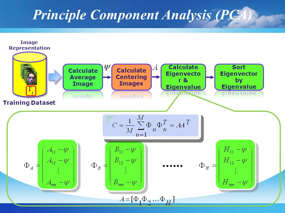 Principle Component Analysis (PCA) Training Dataset Image Representation