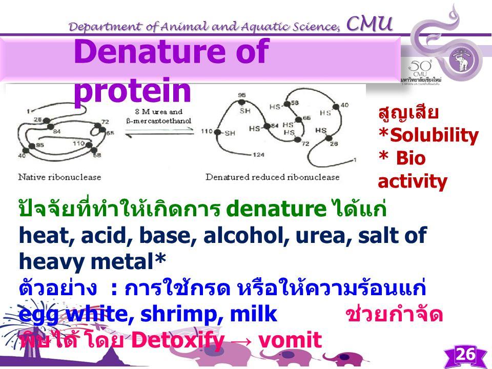 Department of Animal and Aquatic Science, CMU ปัจจัยที่ทำให้เกิดการ denature ได้แก่ heat, acid, base, alcohol, urea, salt of heavy metal* ตัวอย่าง : ก