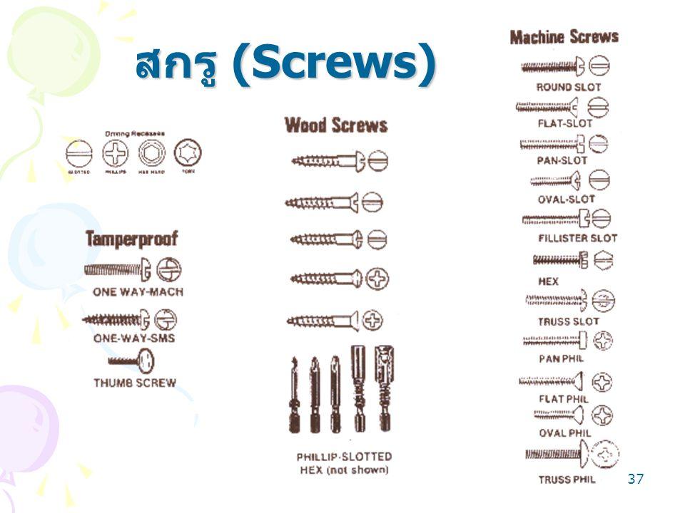 37 สกรู (Screws)