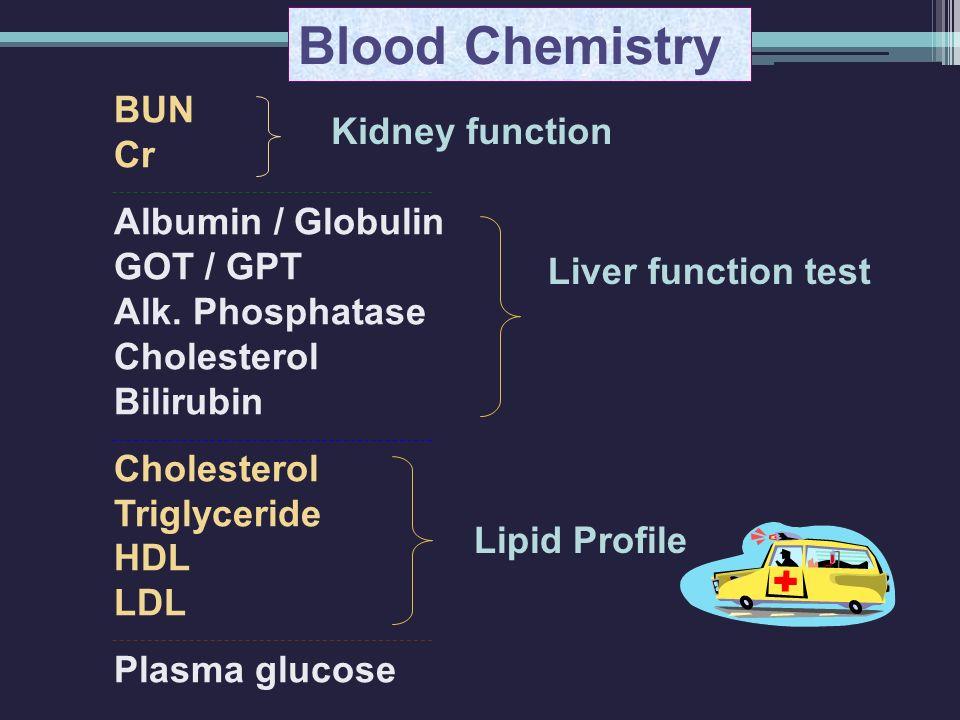 Blood Chemistry BUN Cr Albumin / Globulin GOT / GPT Alk. Phosphatase Cholesterol Bilirubin Cholesterol Triglyceride HDL LDL Plasma glucose Kidney func