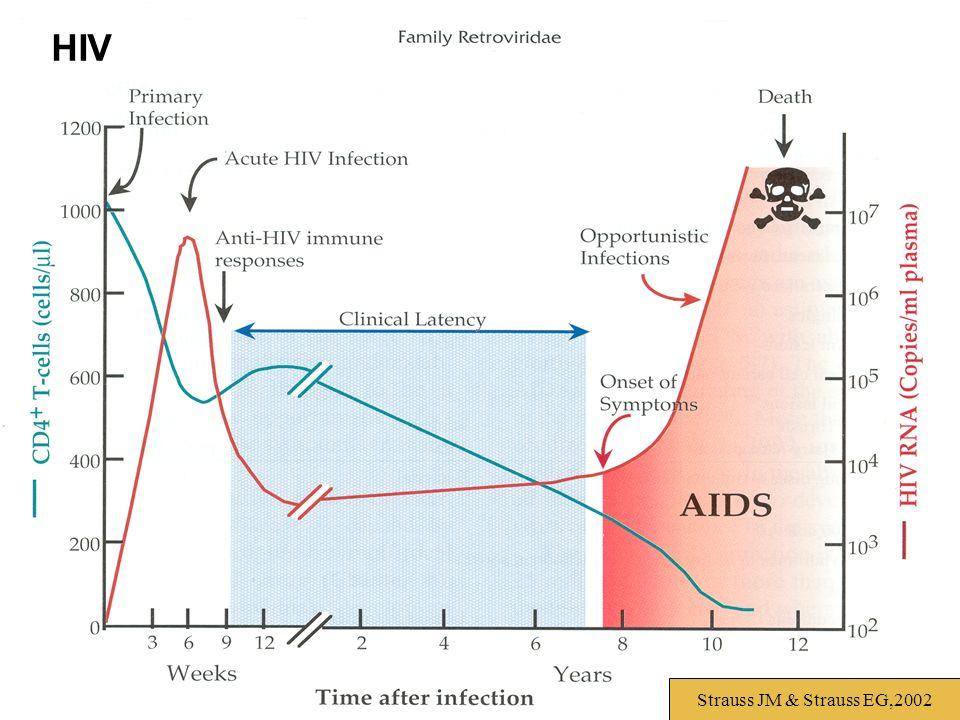 Strauss JM & Strauss EG,2002 HIV