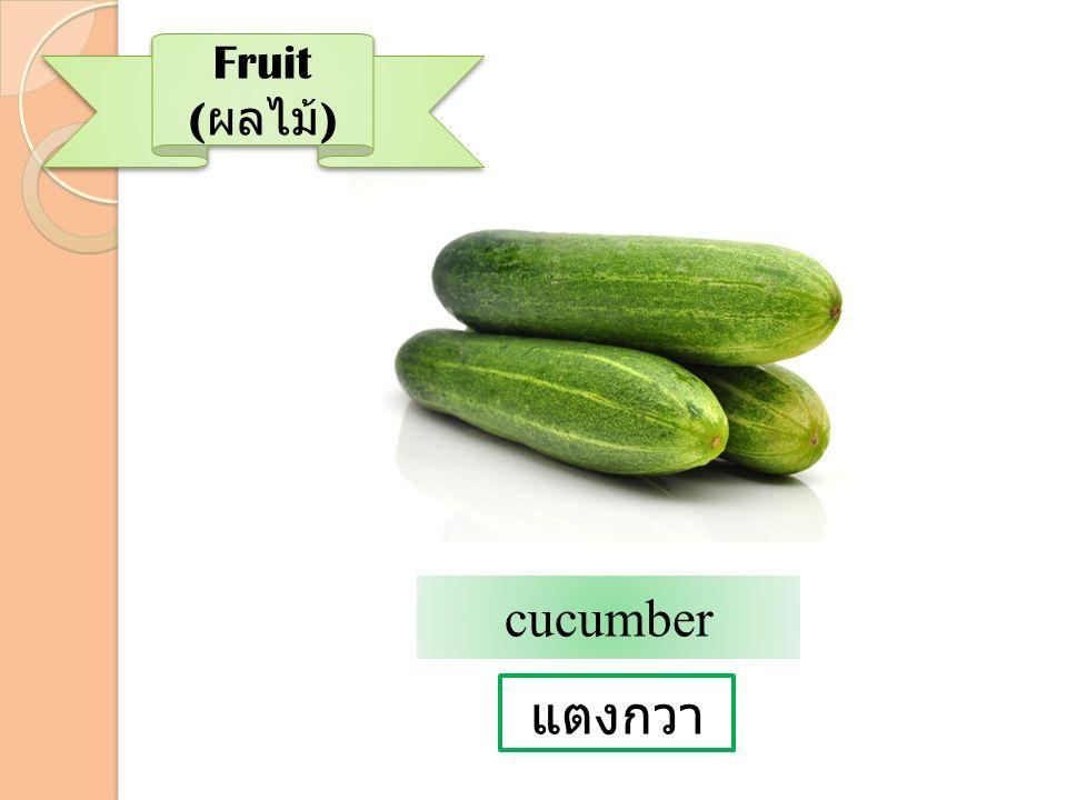 แตงกวา Fruit ( ผลไม้ ) cucumber