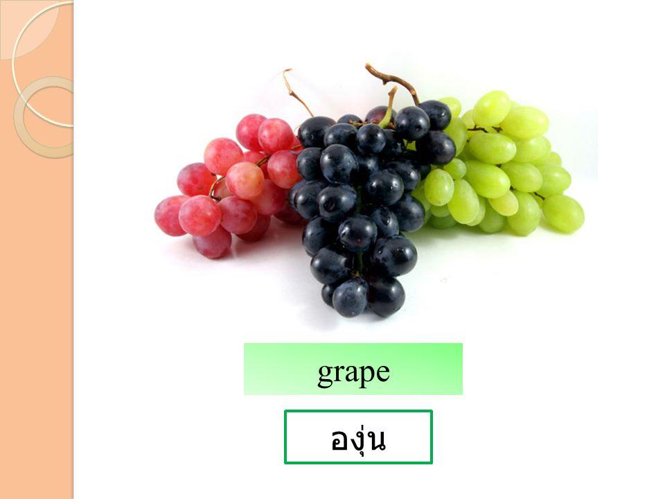 องุ่น grape