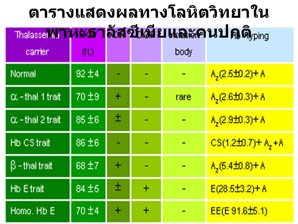ผล CBC ที่ดูประกอบ %Hb F = 0.0%Hb A 2 = 2.5Hb-typing : A 2 A MCV > 90 pg, RDW/CV 12 – 16 แปลผล : Normal typing MCV > 80 pg, RDW/CV < 16 แปลผล : Normal typing (but alpha-thal2 trait not exclude) MCV < 80 pg แปลผล : Normal typing (but alpha-thal trait not exclude) Genotype   MCV<80 ตรวจ –– thal 1 DNA