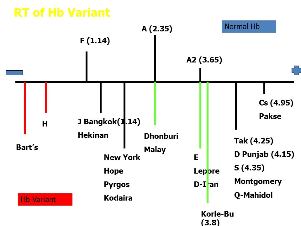 Unknown Abnormal Hb Heterozygouse : HbE + Hb Dhonburi Heterozygouse : HbE + Hb Korle-Bu