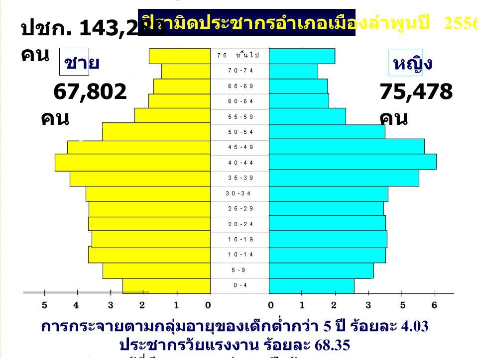 ปิรามิดประชากรอำเภอเมืองลำพูนปี 2556 การกระจายตามกลุ่มอายุของเด็กต่ำกว่า 5 ปี ร้อยละ 4.03 ประชากรวัยแรงงาน ร้อยละ 68.35 และผู้ที่มีอายุมากกว่า 60 ปี ร