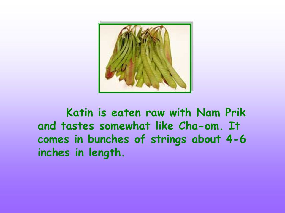 Katin is eaten raw with Nam Prik and tastes somewhat like Cha-om. It comes in bunches of strings about 4-6 inches in length.