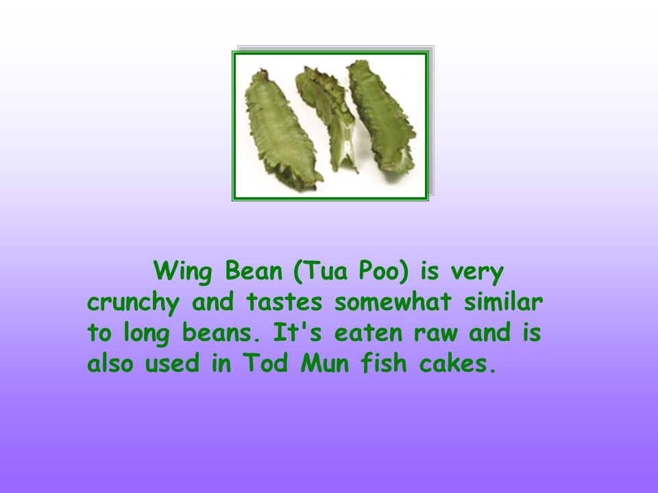 Wing Bean (Tua Poo) is very crunchy and tastes somewhat similar to long beans. It's eaten raw and is also used in Tod Mun fish cakes.