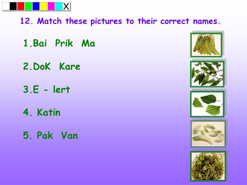 12. Match these pictures to their correct names. 1.Bai Prik Ma 2.DoK Kare 3.E - lert 4. Katin 5. Pak Van