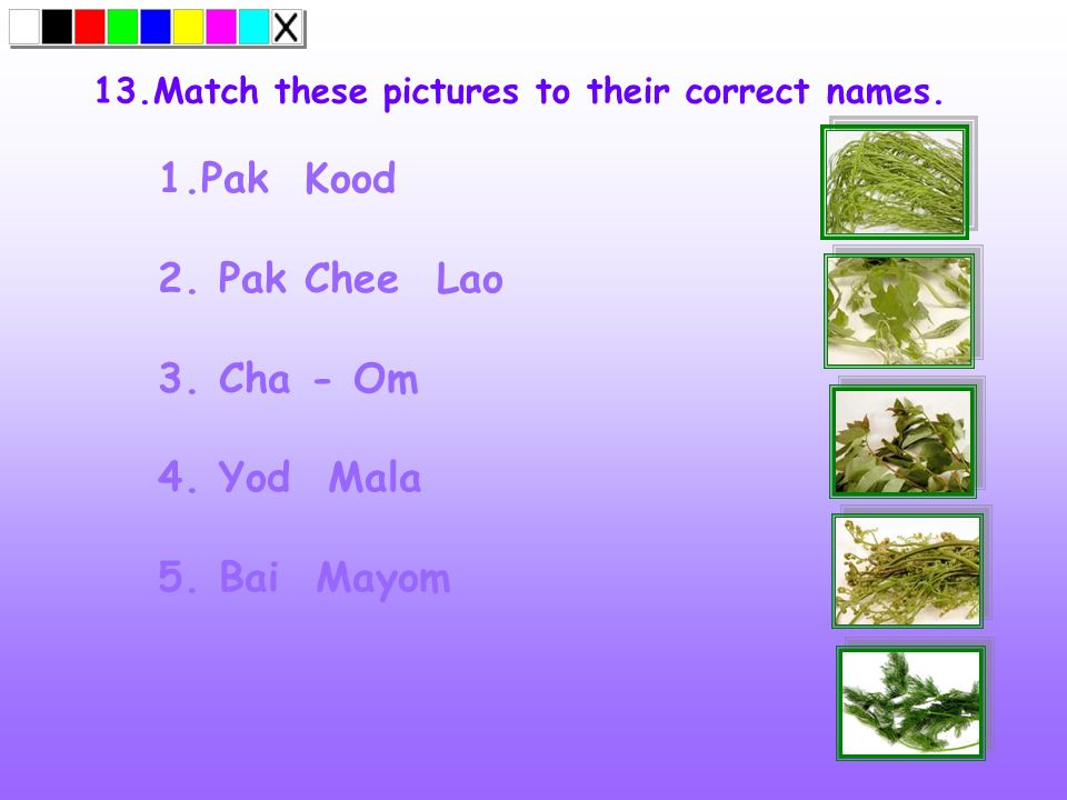 13.Match these pictures to their correct names. 1.Pak Kood 2. Pak Chee Lao 3. Cha - Om 4. Yod Mala 5. Bai Mayom