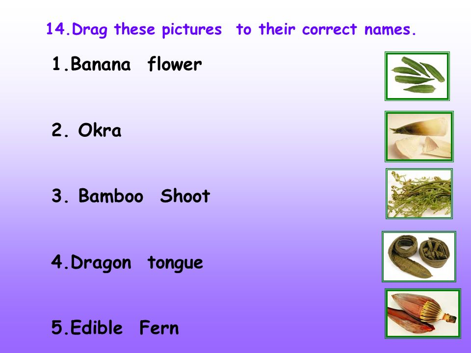 14.Drag these pictures to their correct names. 1.Banana flower 2. Okra 3. Bamboo Shoot 4.Dragon tongue 5.Edible Fern