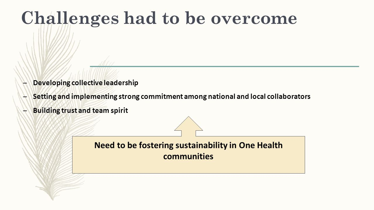 Challenges had to be overcome – Developing collective leadership – Setting and implementing strong commitment among national and local collaborators –