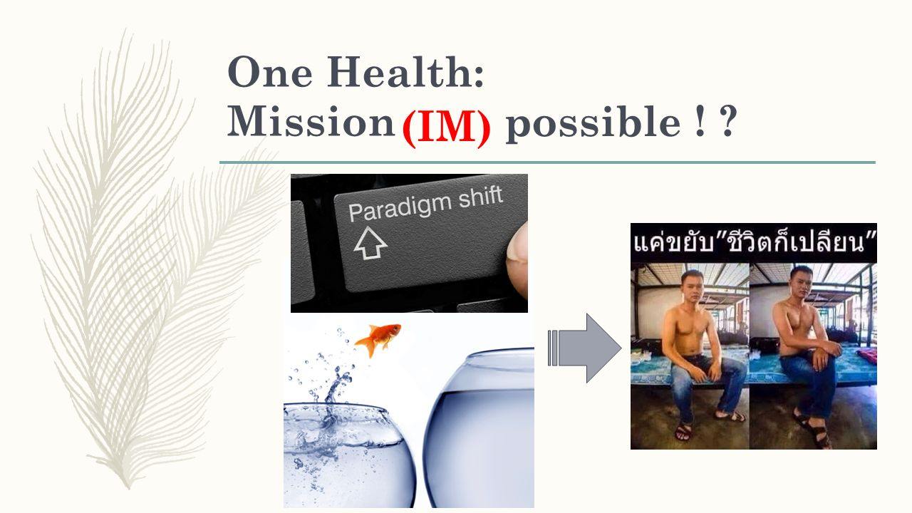 One Health: Mission ! ? (IM) possible