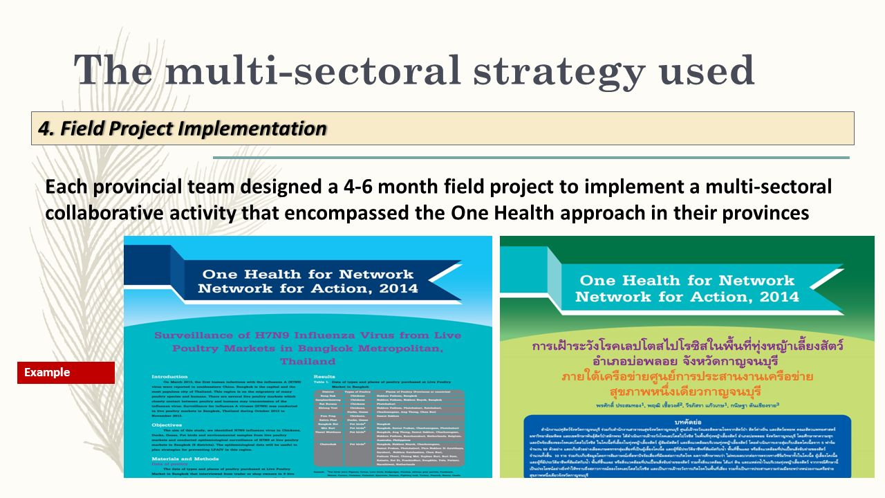 The multi-sectoral strategy used 4.Field Project Implementation4.