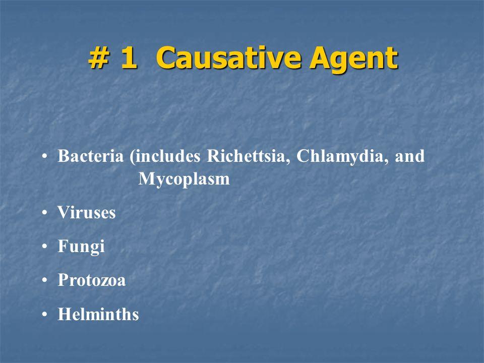 # 1 Causative Agent Bacteria (includes Richettsia, Chlamydia, and Mycoplasm Viruses Fungi Protozoa Helminths