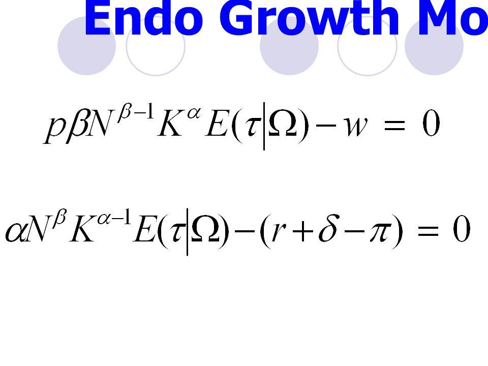 Endo Growth Model (3)
