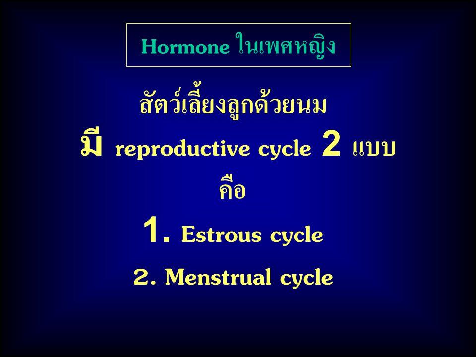 Hormone ในเพศหญิง สัตว์เลี้ยงลูกด้วยนม มี reproductive cycle 2 แบบ คือ 1. Estrous cycle 2. Menstrual cycle