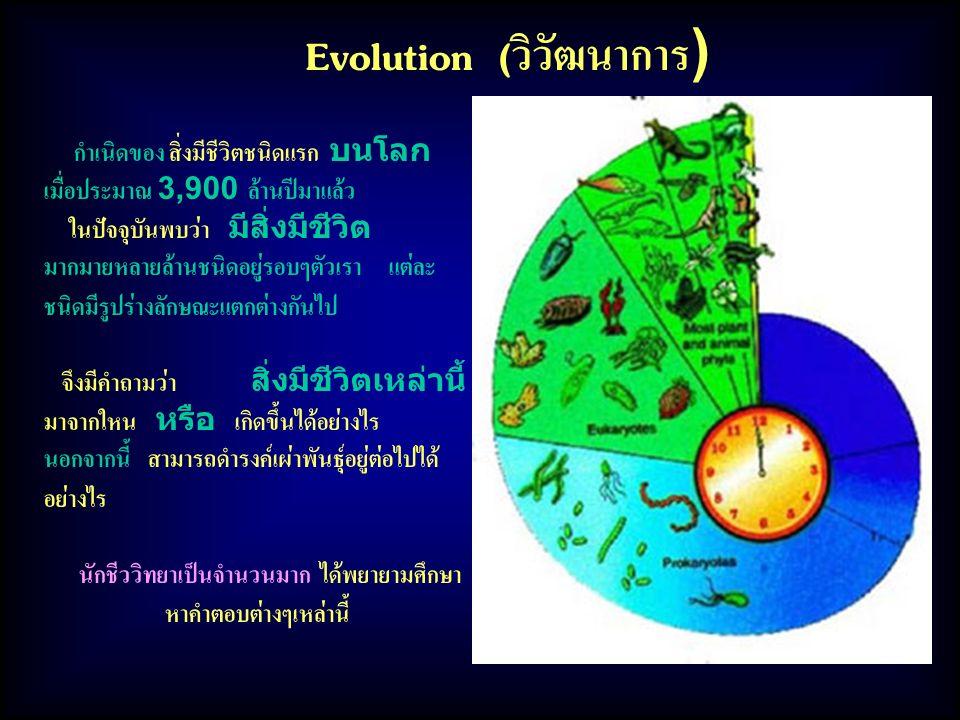 Evolution (วิวัฒนาการ) กำเนิดของ สิ่งมีชีวิตชนิดแรก บนโลก เมื่อประมาณ 3,900 ล้านปีมาแล้ว ในปัจจุบันพบว่า มีสิ่งมีชีวิต มากมายหลายล้านชนิดอยู่รอบๆตัวเรา แต่ละ ชนิดมีรูปร่างลักษณะแตกต่างกันไป จึงมีคำถามว่า สิ่งมีชีวิตเหล่านี้ มาจากใหน หรือ เกิดขึ้นได้อย่างไร นอกจากนี้ สามารถดำรงค์เผ่าพันธุ์อยู่ต่อไปได้ อย่างไร นักชีววิทยาเป็นจำนวนมาก ได้พยายามศึกษา หาคำตอบต่างๆเหล่านี้