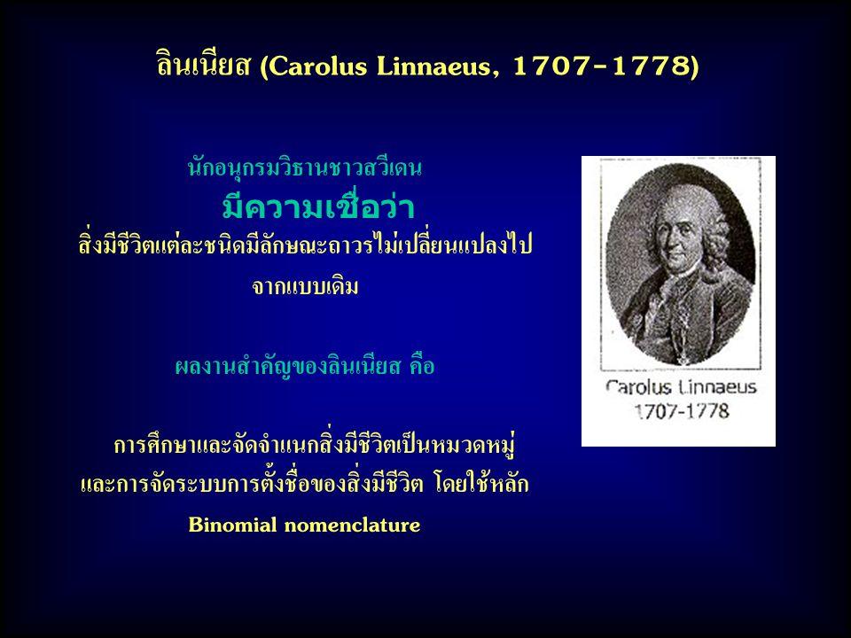 ลินเนียส (Carolus Linnaeus, 1707-1778) นักอนุกรมวิธานชาวสวีเดน มีความเชื่อว่า สิ่งมีชีวิตแต่ละชนิดมีลักษณะถาวรไม่เปลี่ยนแปลงไป จากแบบเดิม ผลงานสำคัญของลินเนียส คือ การศึกษาและจัดจำแนกสิ่งมีชีวิตเป็นหมวดหมู่ และการจัดระบบการตั้งชื่อของสิ่งมีชีวิต โดยใช้หลัก Binomial nomenclature