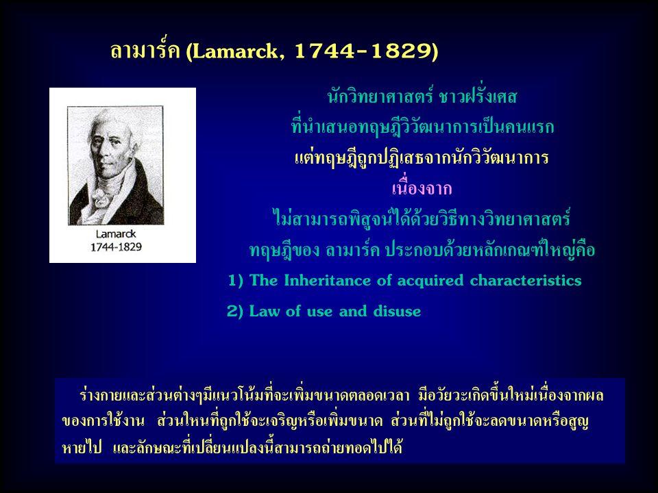 ลามาร์ค (Lamarck, 1744-1829) นักวิทยาศาสตร์ ชาวฝรั่งเศส ที่นำเสนอทฤษฎีวิวัฒนาการเป็นคนแรก แต่ทฤษฎีถูกปฏิเสธจากนักวิวัฒนาการ เนื่องจาก ไม่สามารถพิสูจน์ได้ด้วยวิธีทางวิทยาศาสตร์ ทฤษฎีของ ลามาร์ค ประกอบด้วยหลักเกณฑ์ใหญ่คือ 1) The Inheritance of acquired characteristics 2) Law of use and disuse ร่างกายและส่วนต่างๆมีแนวโน้มที่จะเพิ่มขนาดตลอดเวลา มีอวัยวะเกิดขึ้นใหม่เนื่องจากผล ของการใช้งาน ส่วนใหนที่ถูกใช้จะเจริญหรือเพิ่มขนาด ส่วนที่ไม่ถูกใช้จะลดขนาดหรือสูญ หายไป และลักษณะที่เปลี่ยนแปลงนี้สามารถถ่ายทอดไปได้