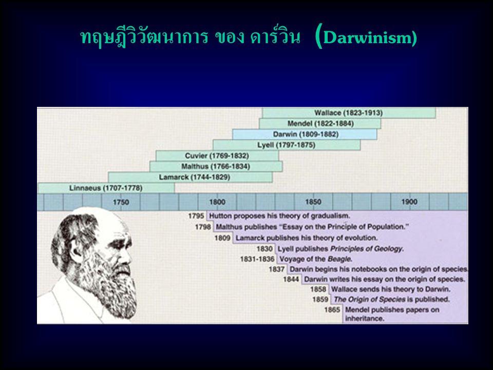 ทฤษฎีวิวัฒนาการ ของ ดาร์วิน (Darwinism)