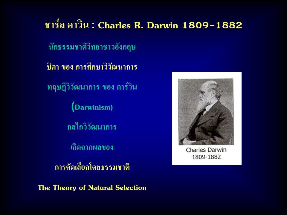 ชาร์ล ดาวิน : Charles R. Darwin 1809-1882 นักธรรมชาติวิทยาชาวอังกฤษ บิดา ของ การศึกษาวิวัฒนาการ ทฤษฎีวิวัฒนาการ ของ ดาร์วิน (Darwinism) กลไกวิวัฒนาการ