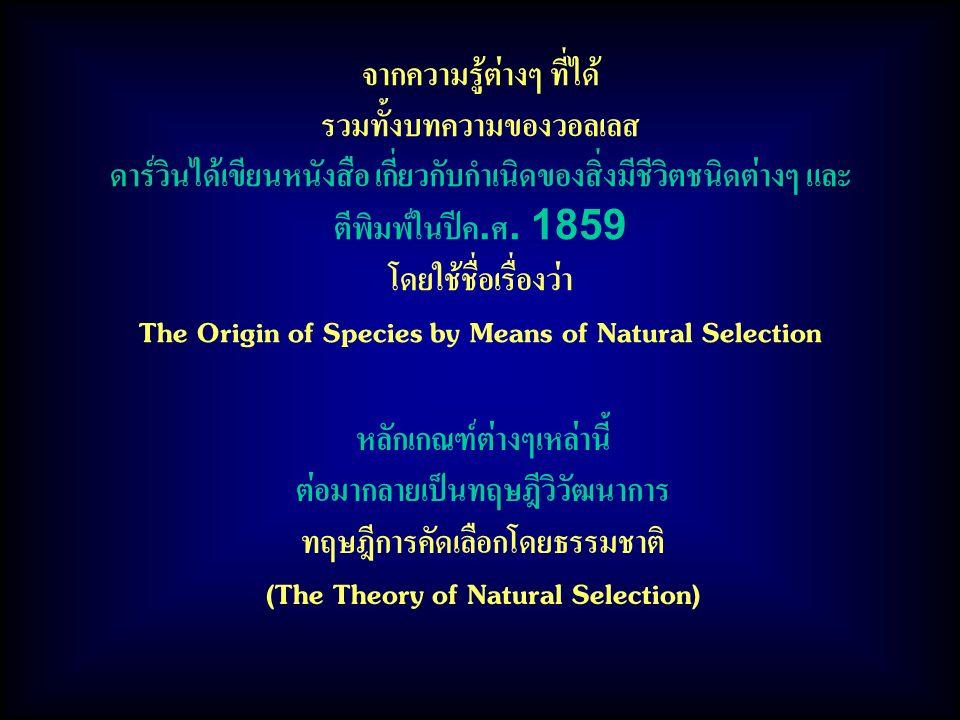 จากความรู้ต่างๆ ที่ได้ รวมทั้งบทความของวอลเลส ดาร์วินได้เขียนหนังสือ เกี่ยวกับกำเนิดของสิ่งมีชีวิตชนิดต่างๆ และ ตีพิมพ์ในปีค.ศ. 1859 โดยใช้ชื่อเรื่องว