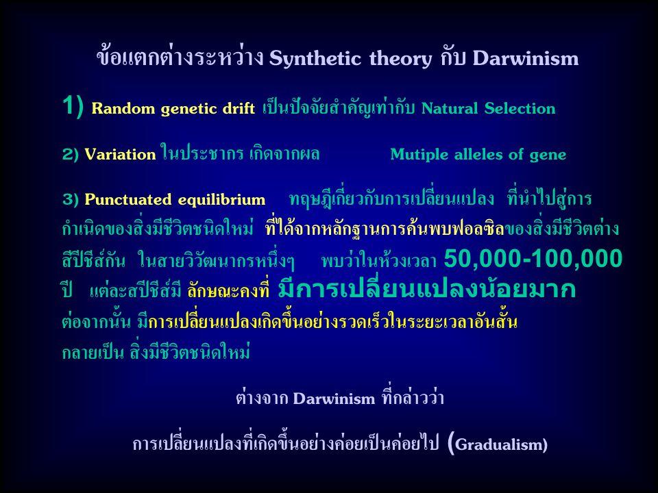 ข้อแตกต่างระหว่าง Synthetic theory กับ Darwinism 1) Random genetic drift เป็นปัจจัยสำคัญเท่ากับ Natural Selection 2) Variation ในประชากร เกิดจากผล Mutiple alleles of gene 3) Punctuated equilibrium ทฤษฎีเกี่ยวกับการเปลี่ยนแปลง ที่นำไปสู่การ กำเนิดของสิ่งมีชีวิตชนิดใหม่ ที่ได้จากหลักฐานการค้นพบฟอลซิลของสิ่งมีชีวิตต่าง สีปีชีส์กัน ในสายวิวัฒนากรหนึ่งๆ พบว่าในห้วงเวลา 50,000-100,000 ปี แต่ละสปีชีส์มี ลักษณะคงที่ มีการเปลี่ยนแปลงน้อยมาก ต่อจากนั้น มีการเปลี่ยนแปลงเกิดขึ้นอย่างรวดเร็วในระยะเวลาอันสั้น กลายเป็น สิ่งมีชีวิตชนิดใหม่ ต่างจาก Darwinism ที่กล่าวว่า การเปลี่ยนแปลงที่เกิดขึ้นอย่างค่อยเป็นค่อยไป (Gradualism)