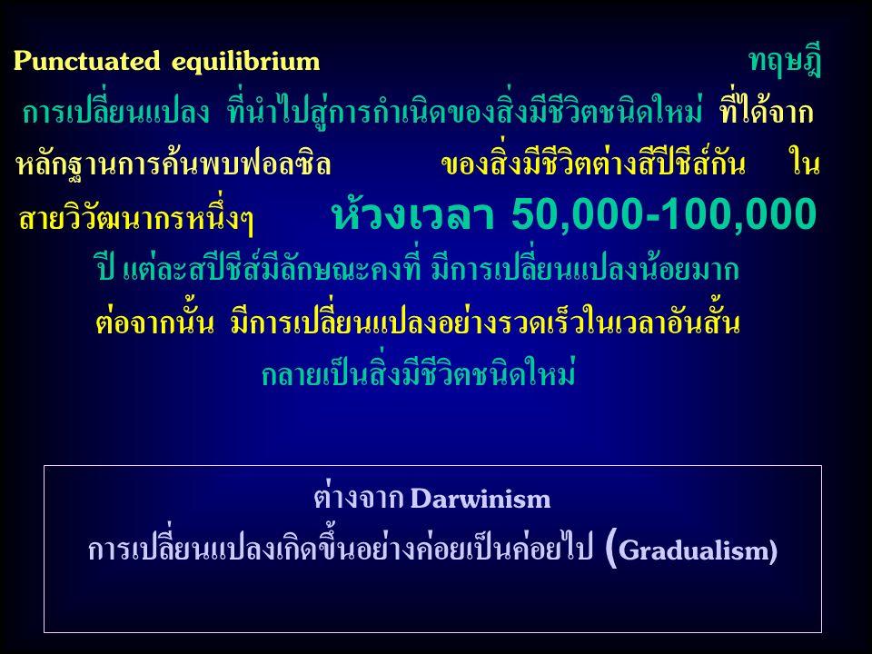 Punctuated equilibrium ทฤษฎี การเปลี่ยนแปลง ที่นำไปสู่การกำเนิดของสิ่งมีชีวิตชนิดใหม่ ที่ได้จาก หลักฐานการค้นพบฟอลซิล ของสิ่งมีชีวิตต่างสีปีชีส์กัน ใน สายวิวัฒนากรหนึ่งๆ ห้วงเวลา 50,000-100,000 ปี แต่ละสปีชีส์มีลักษณะคงที่ มีการเปลี่ยนแปลงน้อยมาก ต่อจากนั้น มีการเปลี่ยนแปลงอย่างรวดเร็วในเวลาอันสั้น กลายเป็นสิ่งมีชีวิตชนิดใหม่ ต่างจาก Darwinism การเปลี่ยนแปลงเกิดขึ้นอย่างค่อยเป็นค่อยไป (Gradualism)