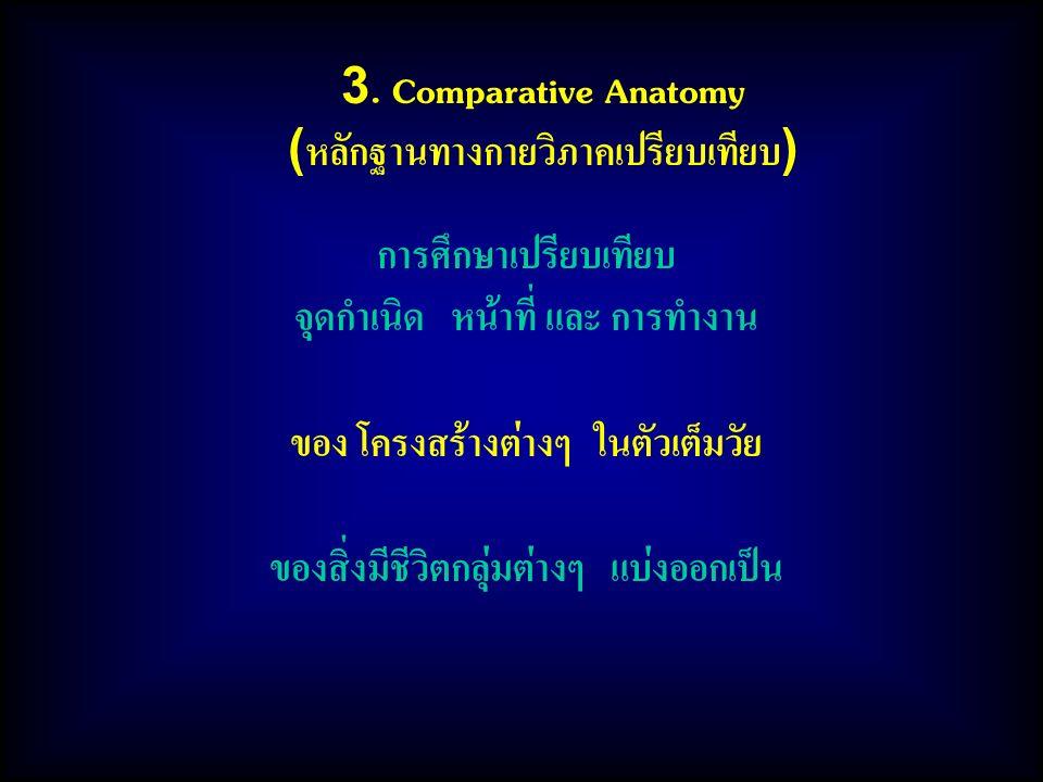 3. Comparative Anatomy (หลักฐานทางกายวิภาคเปรียบเทียบ) การศึกษาเปรียบเทียบ จุดกำเนิด หน้าที่ และ การทำงาน ของ โครงสร้างต่างๆ ในตัวเต็มวัย ของสิ่งมีชีว
