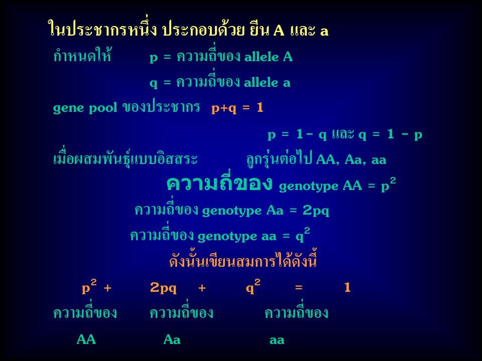 ในประชากรหนึ่ง ประกอบด้วย ยีน A และ a กำหนดให้p = ความถี่ของ allele A q = ความถี่ของ allele a gene pool ของประชากร p+q = 1 p = 1- q และ q = 1 - p เมื่อผสมพันธุ์แบบอิสสระลูกรุ่นต่อไป AA, Aa, aa ความถี่ของ genotype AA = p 2 ความถี่ของ genotype Aa = 2pq ความถี่ของ genotype aa = q 2 ดังนั้นเขียนสมการได้ดังนี้ p 2 +2pq+q 2 =1 ความถี่ของความถี่ของ ความถี่ของ AA Aa aa