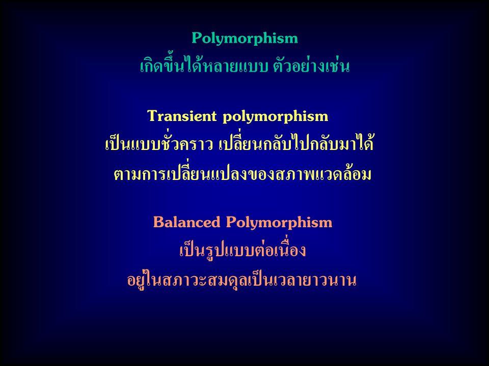 Polymorphism เกิดขึ้นได้หลายแบบ ตัวอย่างเช่น Transient polymorphism เป็นแบบชั่วคราว เปลี่ยนกลับไปกลับมาได้ ตามการเปลี่ยนแปลงของสภาพแวดล้อม Balanced Polymorphism เป็นรูปแบบต่อเนื่อง อยู่ในสภาวะสมดุลเป็นเวลายาวนาน