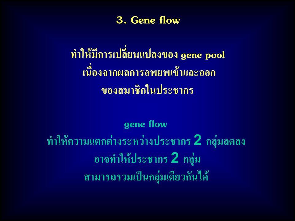 3. Gene flow ทำให้มีการเปลี่ยนแปลงของ gene pool เนื่องจากผลการอพยพเข้าและออก ของสมาชิกในประชากร gene flow ทำให้ความแตกต่างระหว่างประชากร 2 กลุ่มลดลง อ