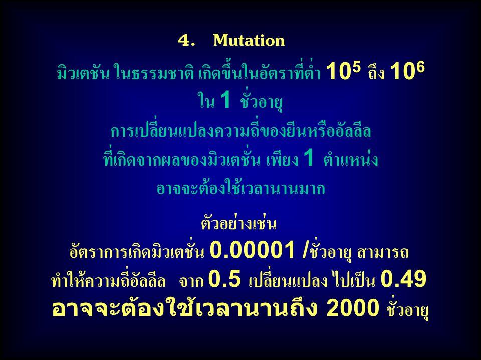 4. Mutation มิวเตชัน ในธรรมชาติ เกิดขึ้นในอัตราที่ต่ำ 10 5 ถึง 10 6 ใน 1 ชั่วอายุ การเปลี่ยนแปลงความถี่ของยีนหรืออัลลีล ที่เกิดจากผลของมิวเตชั่น เพียง