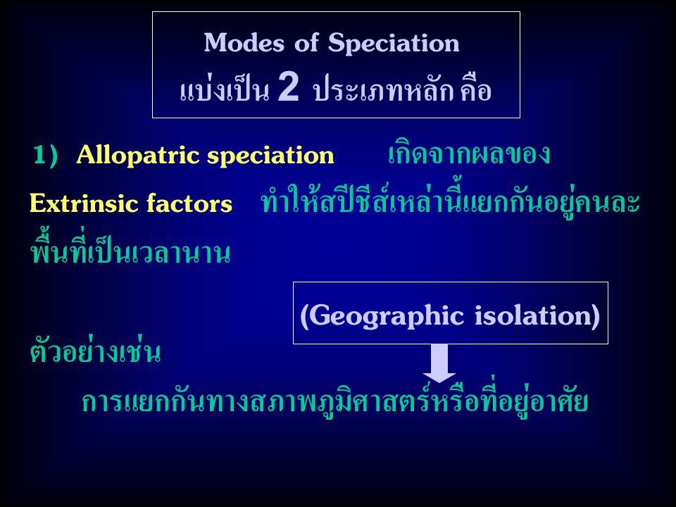 Modes of Speciation แบ่งเป็น 2 ประเภทหลัก คือ 1) Allopatric speciation เกิดจากผลของ Extrinsic factors ทำให้สปีชีส์เหล่านี้แยกกันอยู่คนละ พื้นที่เป็นเวลานาน ตัวอย่างเช่น การแยกกันทางสภาพภูมิศาสตร์หรือที่อยู่อาศัย (Geographic isolation)