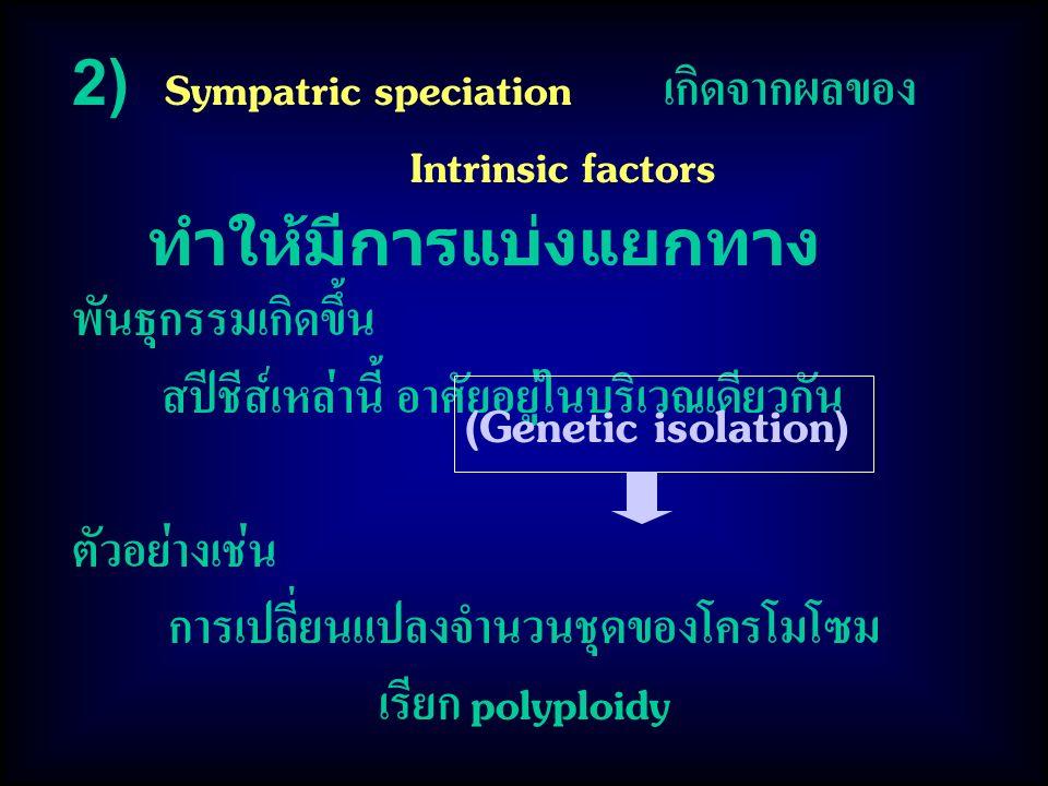2) Sympatric speciation เกิดจากผลของ Intrinsic factors ทำให้มีการแบ่งแยกทาง พันธุกรรมเกิดขึ้น สปีชีส์เหล่านี้ อาศัยอยู่ในบริเวณเดียวกัน ตัวอย่างเช่น ก