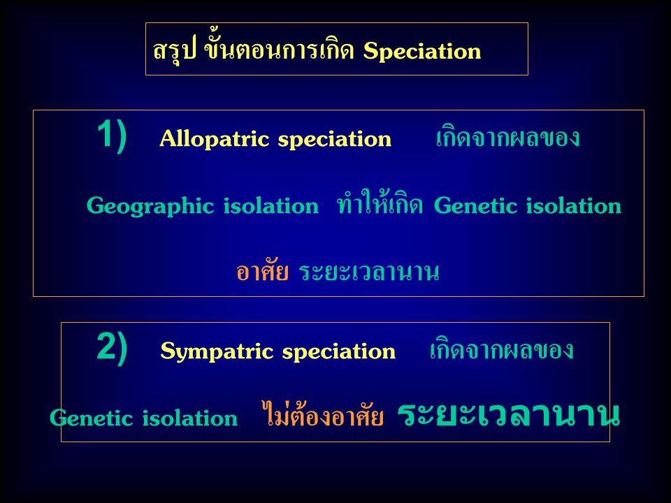 สรุป ขั้นตอนการเกิด Speciation 1) Allopatric speciation เกิดจากผลของ Geographic isolation ทำให้เกิด Genetic isolation อาศัย ระยะเวลานาน 2) Sympatric speciation เกิดจากผลของ Genetic isolation ไม่ต้องอาศัย ระยะเวลานาน