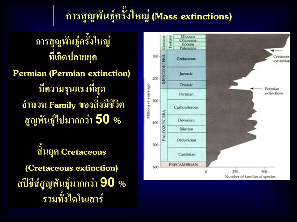 การสูญพันธุ์ครั้งใหญ่ (Mass extinctions) การสูญพันธุ์ครั้งใหญ่ ที่เกิดปลายยุค Permian (Permian extinction) มีความรุนแรงที่สุด จำนวน Family ของสิ่งมีชี