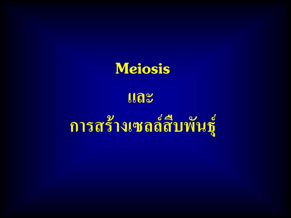 Meiosis และ การสร้างเซลล์สืบพันธุ์