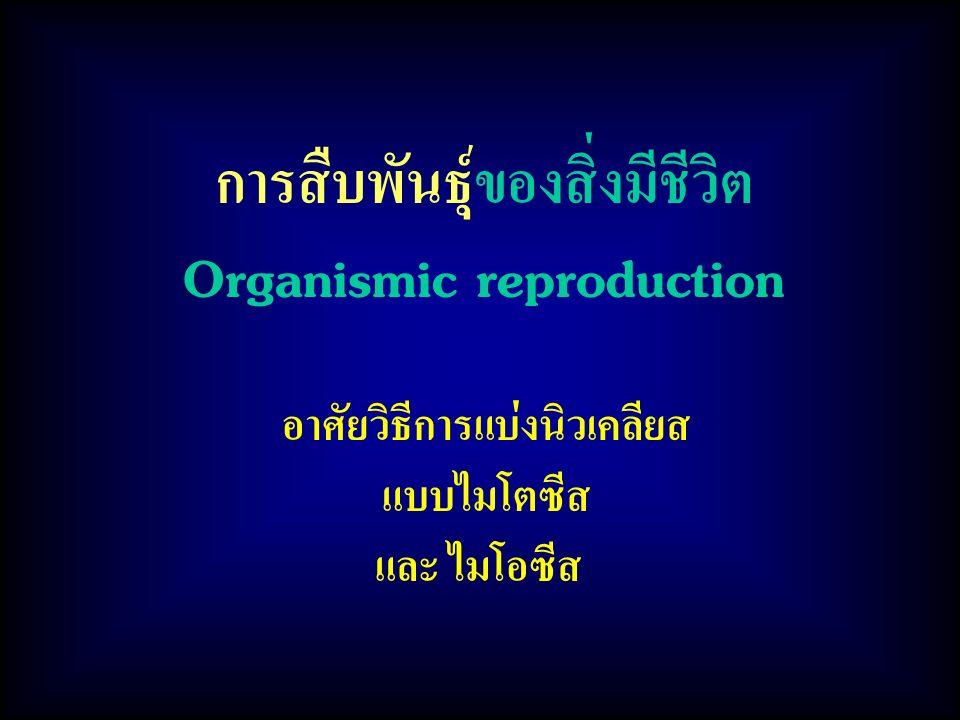 การสืบพันธุ์ของสิ่งมีชีวิต Organismic reproduction อาศัยวิธีการแบ่งนิวเคลียส แบบไมโตซีส และ ไมโอซีส