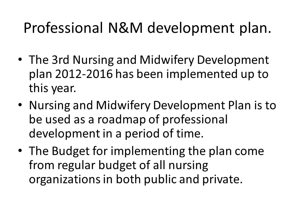Professional N&M development plan.