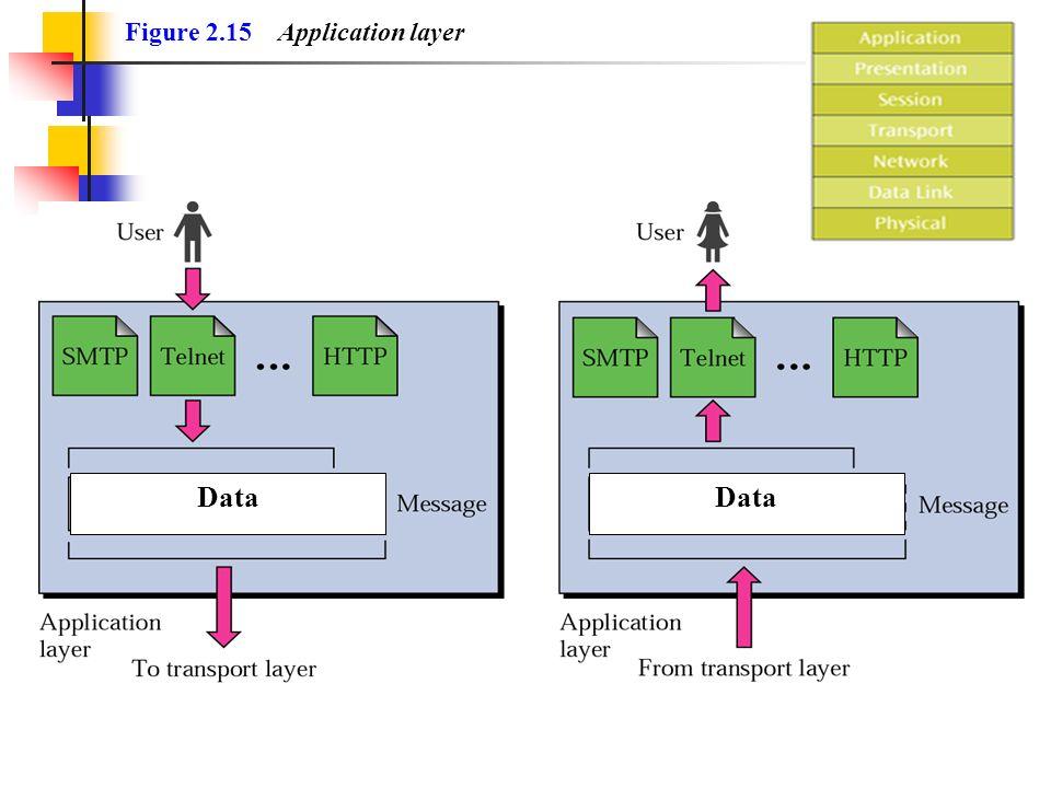 Figure 2.15 Application layer Data