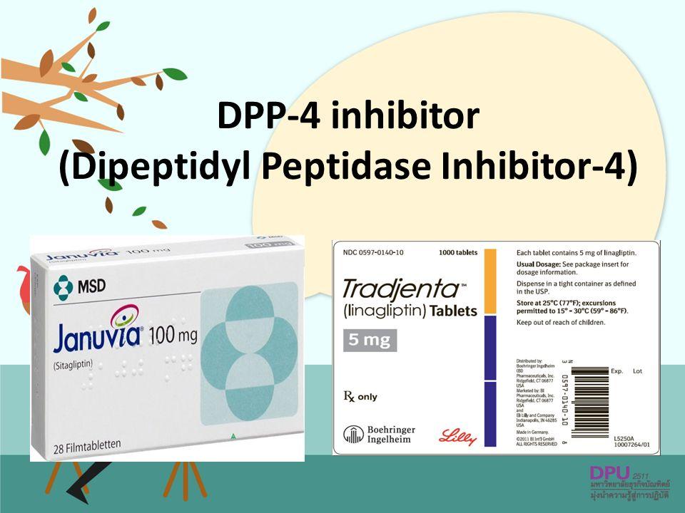 DPP-4 inhibitor (Dipeptidyl Peptidase Inhibitor-4)