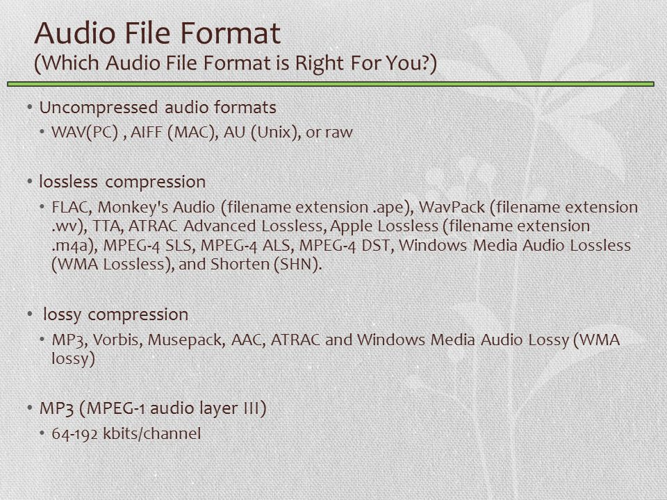 Audio File Format (Which Audio File Format is Right For You ) Uncompressed audio formats WAV(PC), AIFF (MAC), AU (Unix), or raw lossless compression FLAC, Monkey s Audio (filename extension.ape), WavPack (filename extension.wv), TTA, ATRAC Advanced Lossless, Apple Lossless (filename extension.m4a), MPEG-4 SLS, MPEG-4 ALS, MPEG-4 DST, Windows Media Audio Lossless (WMA Lossless), and Shorten (SHN).