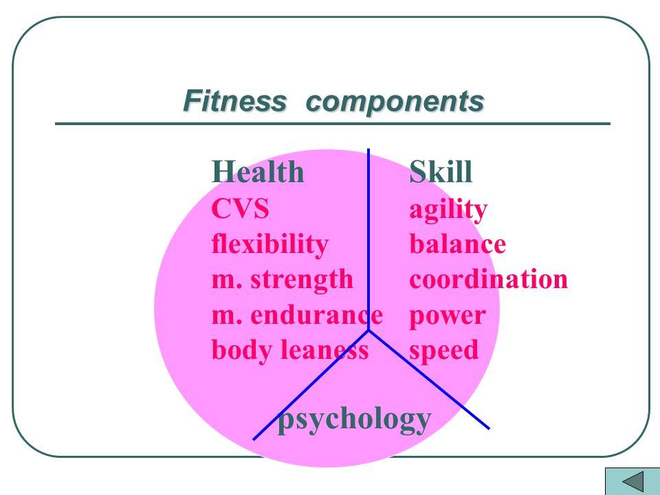 Fitness components HealthSkill CVSagility flexibilitybalance m.